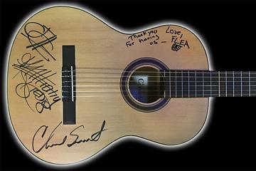 RHCP guitar 360